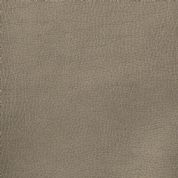 Leatherette  - Metallic Beige - 140cm wide